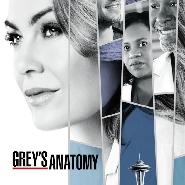 Grey's Anatomy, meredith grey,april kepner