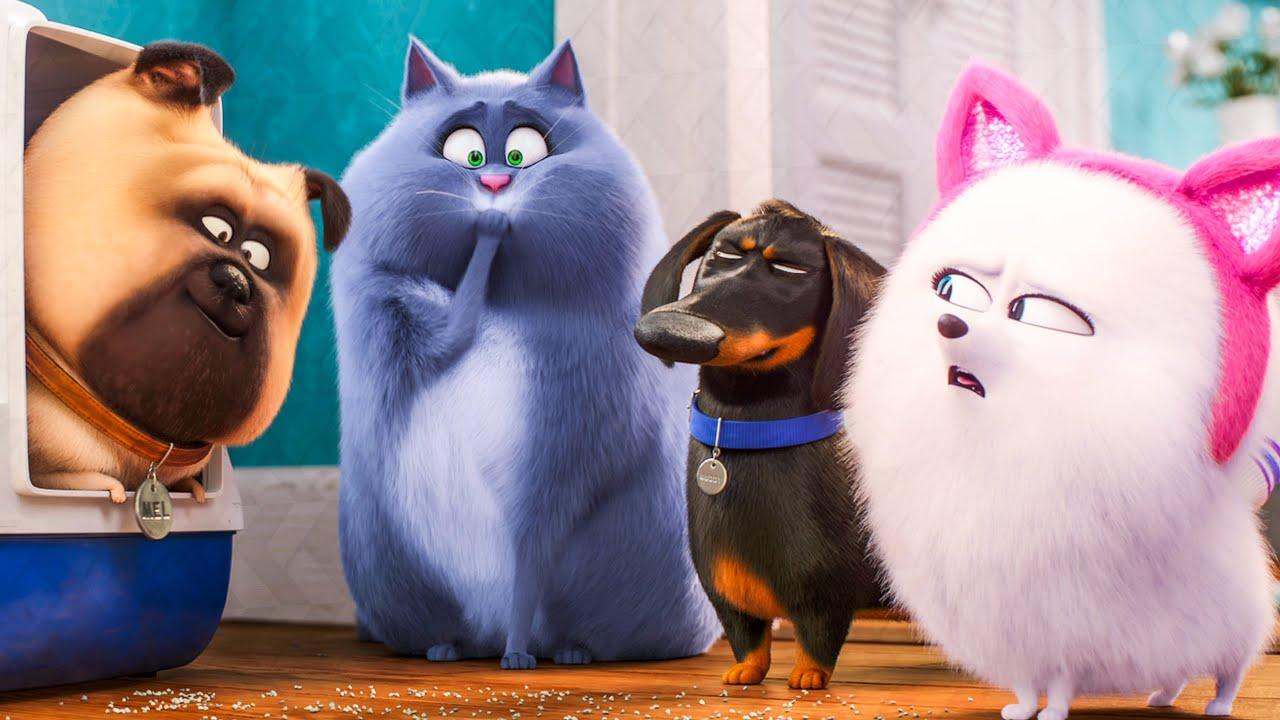 Pets Film Online