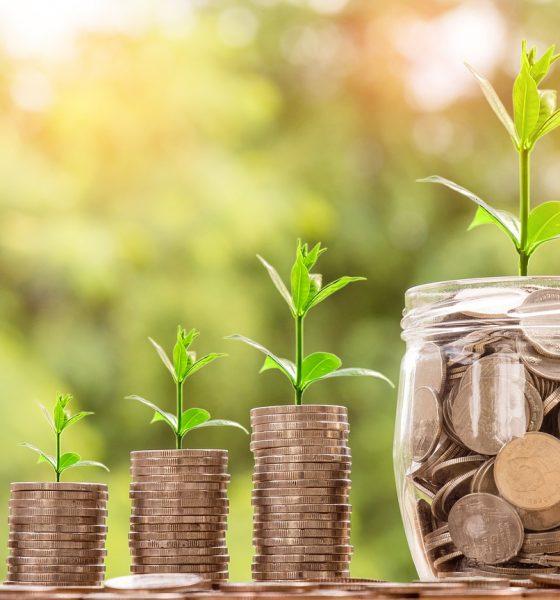 Idee Per Risparmiare In Casa.Risparmio Energetico 5 Idee Per Diminuire I Consumi In Casa Gogo