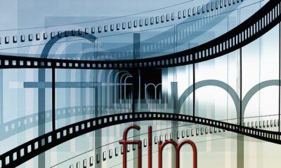 Il Mistero Henri Pick, nuovo film che si aggiunge alla lista di Dicembre-Pixabay