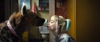 Margot Robbie, Harley Quinn, Gogo Magazine