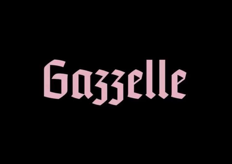 Destri, Gazzelle: il cantante racconta del dolore di un amore finito
