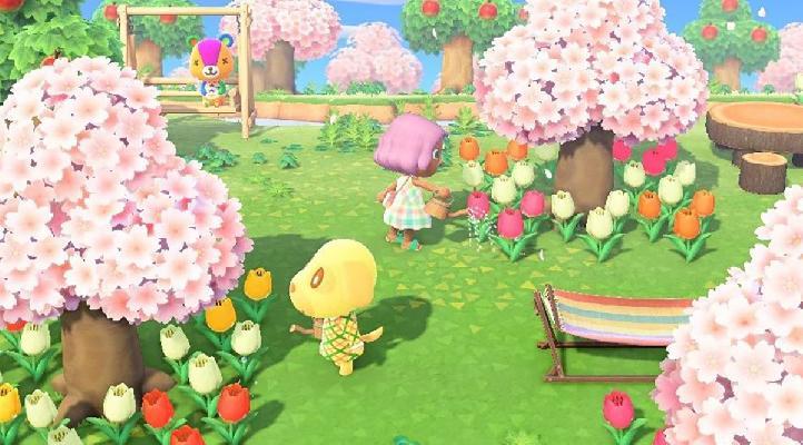 evento fiori di ciliegio
