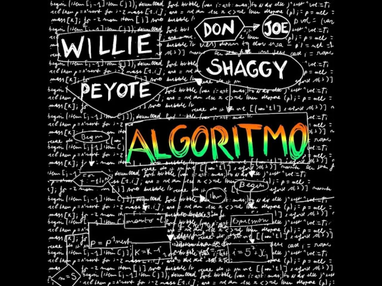 Willie Peyote Algoritmo