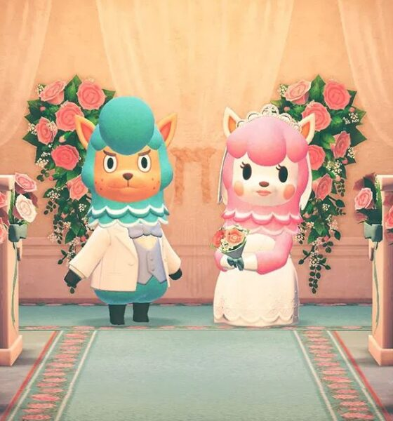animal crossing stagione dei matrimoni
