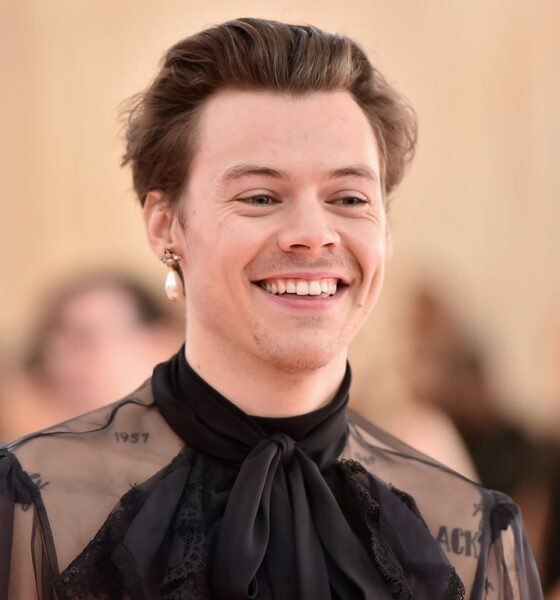 Harry Styles di nuovo attore nel film di Olivia Wilde + harry styles