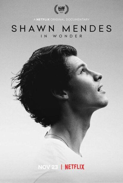 Novità Netflix - Shawn Mendes: In Wonder