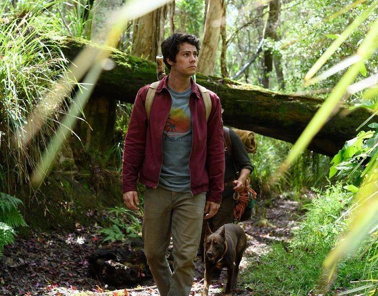 Novità Netflix - Love and Monsters film Dylan O'Brien