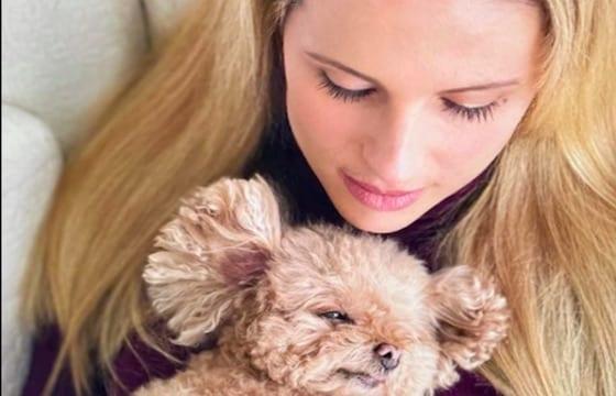 """Michelle Hunziker - La conduttrice ha perso la sua barboncina Lilly: """"Ho il cuore spezzato perché ora non c'è più"""""""